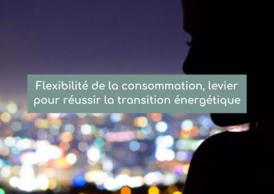 Flexibilité de la consommation, levier pour réussir la transition énergétique